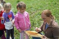 Nejzápadnější místem, kde aktivity u včel probíhají, je Stružnice. Školáky tady do včelařského světa zasvětí manželé Štáglovi.