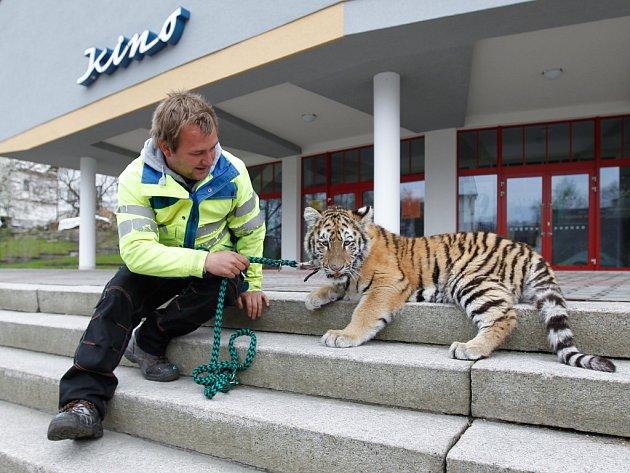 Zoopark Berousek zahájil sezonu s několika novinkami.