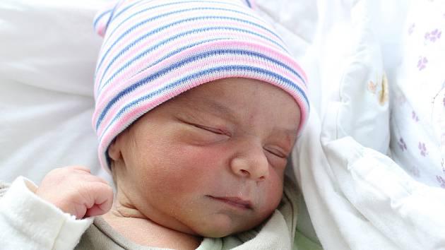 Rodičům Michale Mikové a Martinu Godlovi z Varnsdorfu se ve středu 4. prosince ve 12:15 hodin narodil syn Martin Miko. Měřil 49 cm a vážil 3,10 kg.