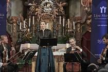 Lípa Musica v Prysku.