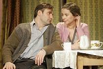 Hlavní roli představení Musíme si pomáhat hraje Jiří Macháček. Toho na prknech českolipského divadla doplní řada dalších vynikajících herců a hereček, například Lenka Vlasáková.