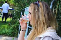 Burčáky, výborná vína a zábava pro celou rodinu i letos přilákaly do areálu hotelu Port v Doksech velký počet návštěvníků.