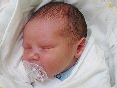 Rodičům Anně Karchňákové a Radkovi Krátkému ze Sloupu v Čechách se ve středu 13. dubna v 18:14 hodin narodil syn Radek Krátký. Měřil 50 cm a vážil 3,29 kg.