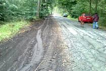 Silnice ze Slunečné do Šenova volá po opravě.