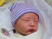 Rodičům Markétě a Tomášovi Maříkovým z Dubé se ve středu 24. ledna v 19:26 hodin narodil syn Tomáš Mařík. Měřil 49 cm a vážil 2,92 kg.