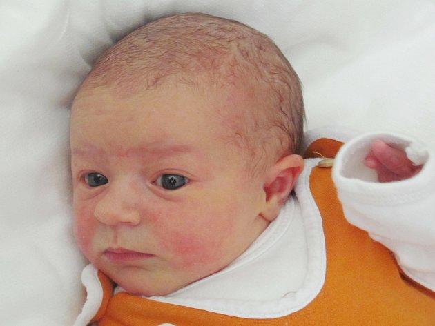 Rodičům Janě Kolaříkové a Milanu Krocovi z Lindavy se čtvrtek 7. dubna v 0:37 hodin narodila dcera Vanesa Krocová. Měřila 50 cm a vážila 3,38 kg.