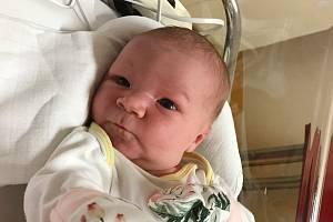 Rodičům Denise a Petrovi Bohatovým z Liberce se ve čtvrtek 5. března ve 13:02 hodin narodila dcera Natálie Bohatová. Měřila 51 cm a vážila 3,89 kg.