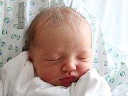Rodičům Martině Svobodové a Milanu Studeckému ze Cvikova se v neděli 22. ledna ve 13:51 hodin narodil syn Milan Studecký. Měřil 50 cm a vážil 2,98 kg.