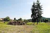 Ještě ani 27. července nezačala stavba supermarketu ve Cvikově, přestože místo je již zbavené stromů (vyjma plánovaně stojících dvou smrků) i pařezů.
