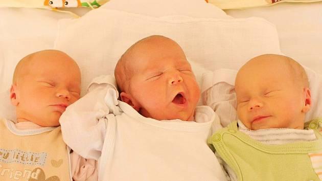 Mamince Miroslavě Alabi se v úterý 23. června narodila trojčata Aneta, Dorota a Amálie Kacafírkovy.