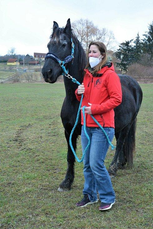 Ranč Angel. Alena Průchová se stará o osm koní. Před nouzovým stavem a pandemií pořádala oblíbené příměstské tábory ve Svojkově.