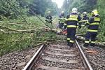 Strom spadl na trať z Mimoně na Zákupy.