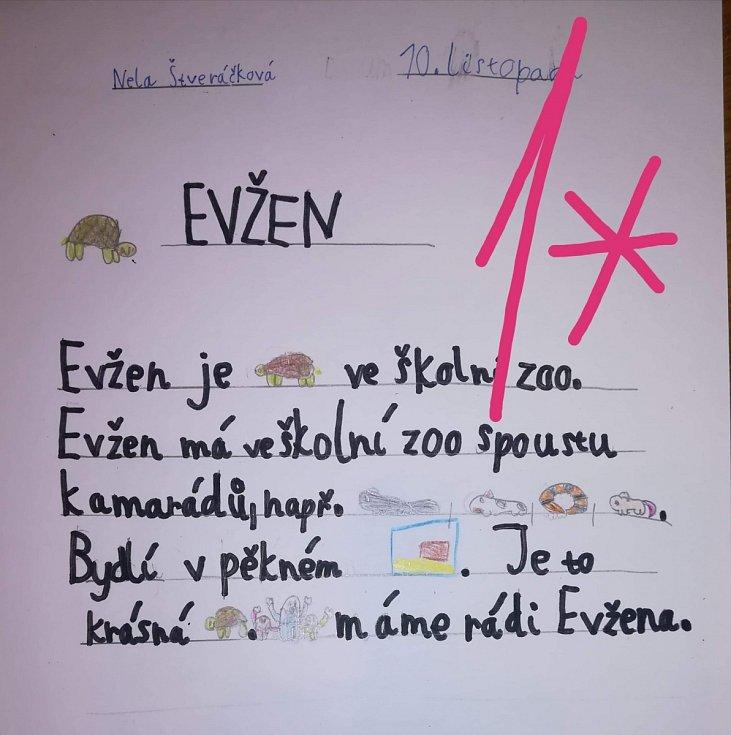 Když má svátek želvák Evžen...