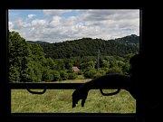 Návštěvníci oslav mohli zažít, jak se jezdilo veřejnou dopravou v dobách, kdy v Kamenickém Šenově vzkvétal sklářský průmysl a lokálka funěla do kopců na rozhraní Lužických hor a Českého středohoří.