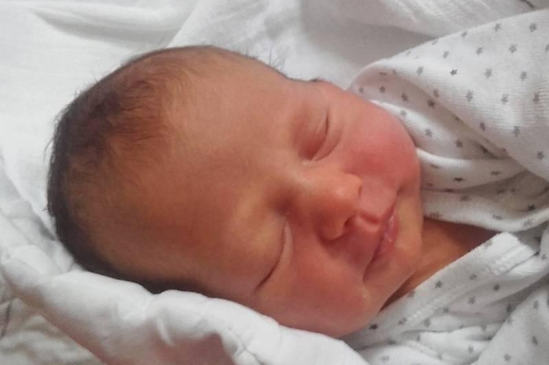 Rodičům Daniele a Lukášovi se v jilemnické porodnici v sobotu 19. června v 15:26 hodin narodila dcera Anna  Nováková. Vážila 3,12 kg. Doma se na ni těšili také sourozenci Lukáš a Zuzana.