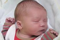 Mamince Denise Korpášové z České Lípy se v sobotu 15. listopadu ve 20:14 hodin narodila dcera Eliška Korpášová. Měřila 51 cm a vážila 3,67 kg.