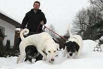 SNĚŽENKA, OLIVA, TRNKA. Všechny psy ve smečce pojmenoval musher po rostlinách, všichni pocházejí z útulků a mladý muž je vychovával od štěňat. Na snímku zaměstnanec děčínského útulku Jaroslav Kácha se třemi fenkami, jež potřebují nové pány.