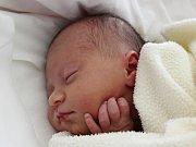Rodičům Renatě Strelecké a Jaroslavu Rýdlovi se v pondělí 18. září ve 23:00 hodin narodila dcera Anna Strelecká. Měřila 45 cm a vážila 2,25 kg.