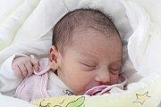 Rodičům Martině Krauzové a Tomáši Tancošovi z Nového Boru se v sobotu 13. července ve 21:45 hodin narodila dcera Ivana Tancošová. Měřila 46 cm a vážila 3,60 kg.
