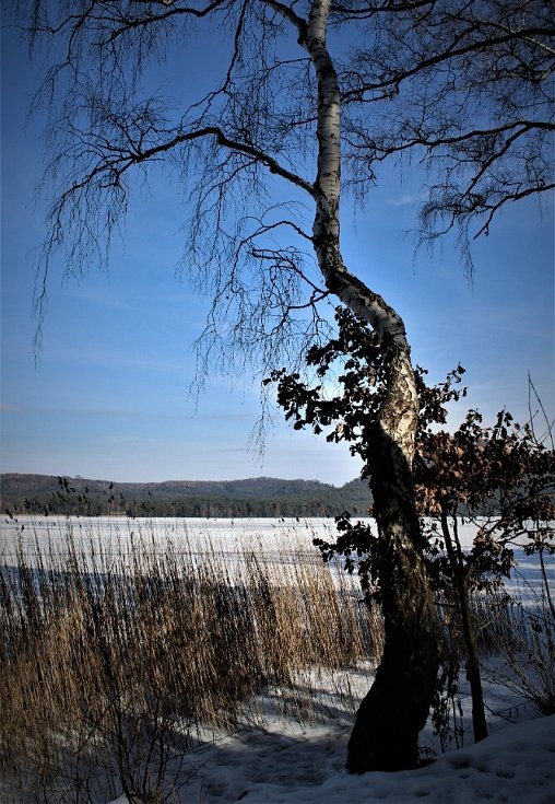Kolem Máchova jezera.