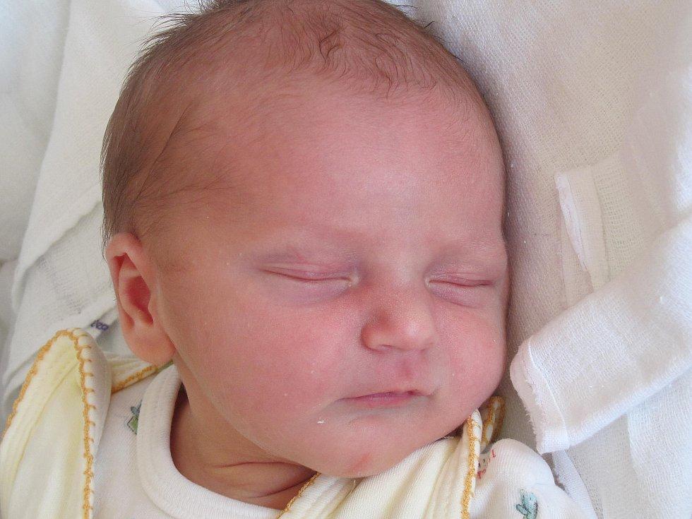 4.Mamince Sabině Petrlíkové z Děčína se 8. září v 11:37 hod. narodila dcera Anna Petrlíková. Měřila 50 cm a vážila 3,45 kg.