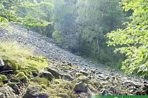 Kamení z Tlustce zaplavuje les.