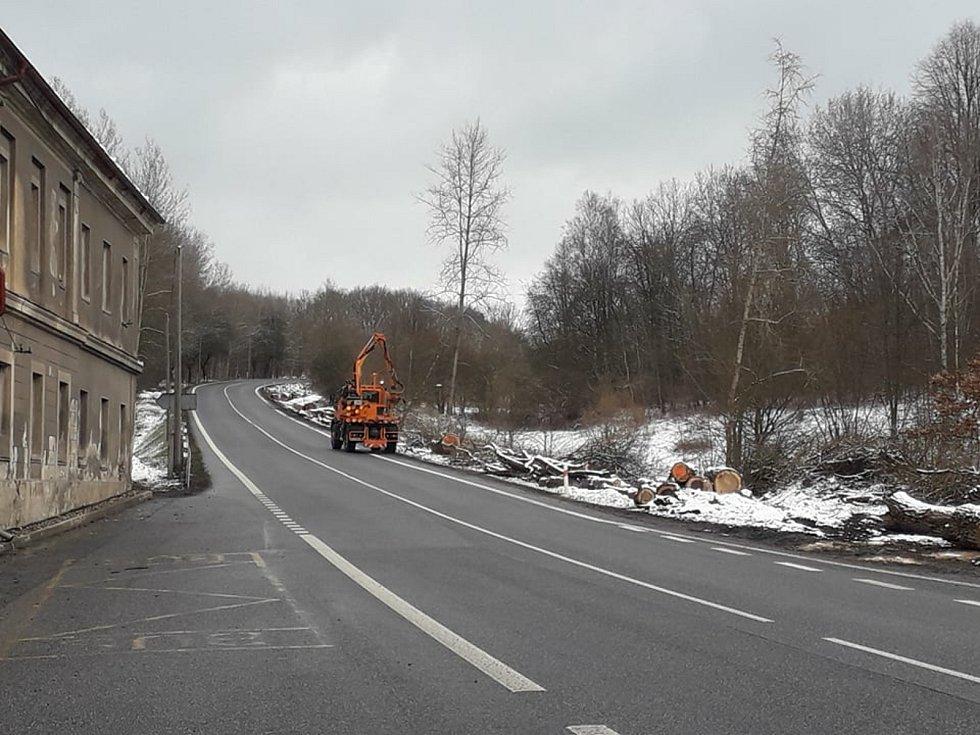 silnice I/9 u Podolce na Českolipsku, kácení nebezpečných topolů.FOTO: Zuzka Martínková