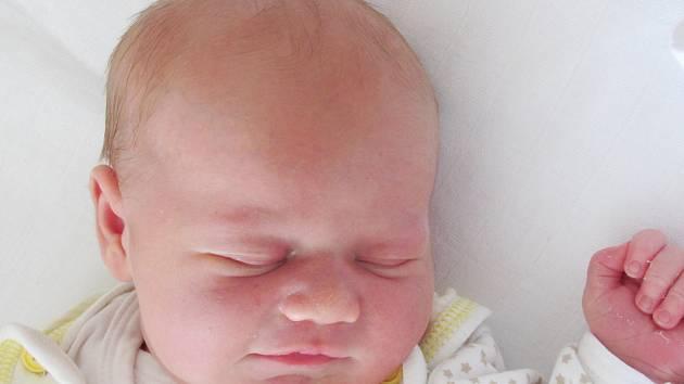Rodičům Šárce a Radimovi Hoffmanovým z České Lípy se v pátek 31. července v 19:49 hodin narodila dcera Julie Hoffmanová. Měřila 48 cm a vážila 3,46 kg.