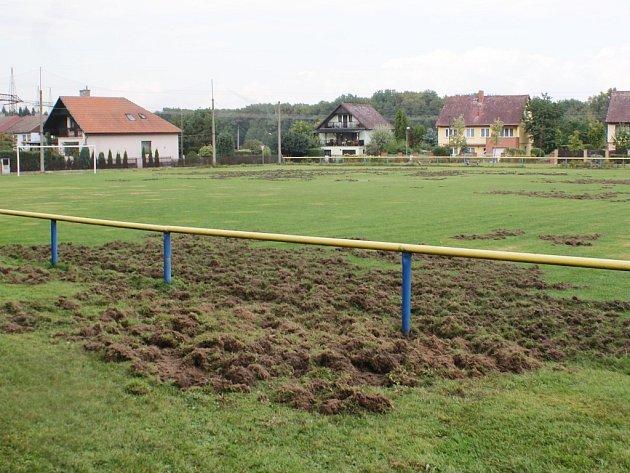 Divoká prasata v noci na pátek zničila většinu hrací plochy hřiště v Sosnové.