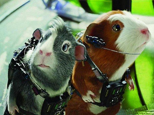 Animovanou komedii Ge-Force má dnes na programu kino Máj v Doksech.