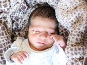 Rodičům z České Lípy se v pátek 12. října narodil syn Mikuláš H. Měřil 49 cm a vážil 3,23 kg.