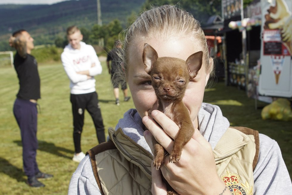 Sedmý ročník Skalice Celebrity Open Cup se konal v sobotu 18. července na fotbalovém hřišti ve Skalici u České Lípy.