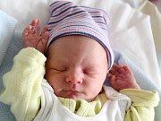 Rodičům Anně a Petrovi Procháskovým z Provodína se v pondělí 26. listopadu v 11:54 hodin narodil syn Jiří Procháska. Měřil 49 cm a vážil 2,76 kg.