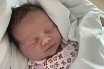 Rodičům Dagmar a Davidovi Wildmanovým ze Skalice u České Lípy se v pondělí 2. listopadu v 7:12 hodin narodila dcera Kristýna. Měřila 50 cm a vážila 3,74 kg. Doma na ni čekal bratr Adam.