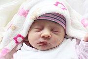 Rodičům Kateřině Folbrechtové a Jakubu Urbancovi ze Cvikova se ve čtvrtek 18. července v 17:19 hodin narodila dcera Markéta Urbancová.