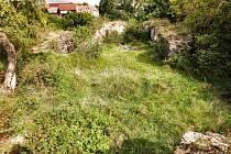 Zpopudu samotného pražského biskupství byl založen na Českolipsku někdy před rokem 1300 hrad zvaný Hřídelík.