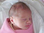 Rodičům Tereze Baštrnákové a Jiřímu Votíkovi z Velké Bukoviny se ve středu 26. října ve 13:59 hodin narodila dcera Rozálie Votíková. Měřila 47 cm a vážila 2,38 kg.