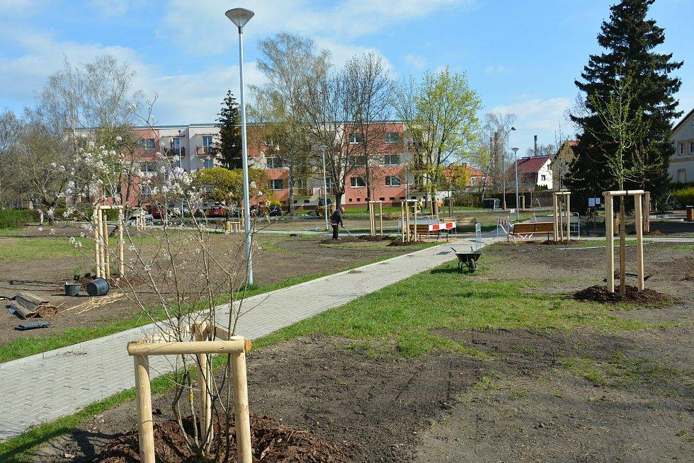 Zahradníci a pomocné síly v českolipské ulici 5. května v těchto dnech finišují s úpravami nového parku.