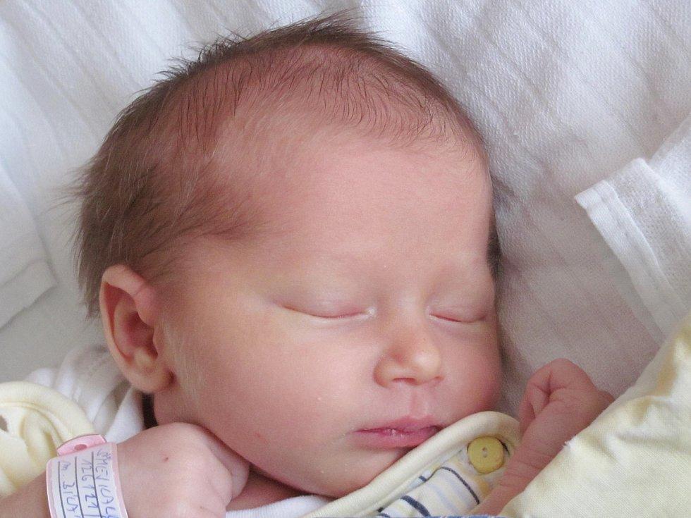 Mamince Pavle Bílé z Nových Zákup se 21. listopadu ve 22:07 hod. narodila dcera Nela Šmejkalová. Měřila 49 cm a vážila 3,11 kg.