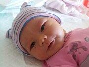 Rodičům Michaele a Jiřímu Tlamichovým z Rynartic se v pátek 6. Dubna ve 14:28 hodin narodila dcera Sofie Tlamichová. Měřila 50 cm a vážila 3,80 kg.