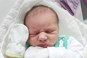 Rodičům Marii Hyhlanové a Martinu Hrdličkovi z České Lípy se v pondělí 20. května v 19:27 hodin narodil syn Pavel Hrdlička. Měřil 52 cm a vážil 3,96 kg.