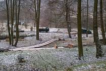 Na 3 000 stromů a keřů z celého světa tvořilo lesopark a unikátní arboretum, které se nacházelo pod Domovem důchodců v Nových Zákupech. Jeho obnova je v plném proudu.