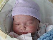 Rodičům Pavlíně Kasalové a Eduardu Worbsovi z Mimoně se ve středu 15. března v 11:02 hodin narodila dcera Alžběta Worbsová. Měřila 52 cm a vážila 4,02 kg.
