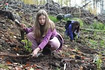 Den za obnovu lesa u Svoru na Českolipsku