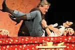 Představení s názvem Herci jsou unaveni měli možnost vidět diváci v neděli v Městském divadle v Novém Boru. Děj komedie se odehrává v domě jedné herečky, která pozve ostatní na grilování. V představení exceloval Svatopluk Skopal a Vendula Křížová.
