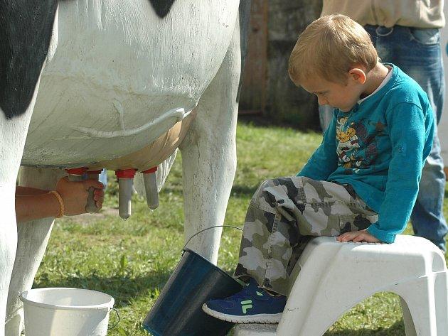 Farmářské slavnosti v Sosnové.