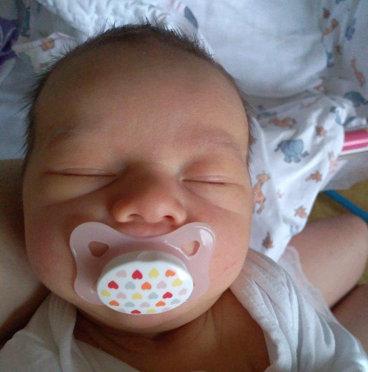 Rodičům Lence a Michalovi Dornbachovým z Děčína se v sobotu 2. ledna v 16:55 hodin narodila dcera Stella Dornbach. Vážila 3,30 kg.