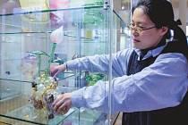 Ve Sklářském muzeu v Kamenickém Šenově budou až do konce listopadu k vidění díla Song Mi Kim.