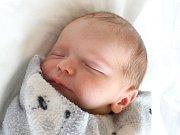 Rodičům Veronice a Michalovi Kotkovým z České Lípy se ve čtvrtek 10. května narodila dvojčata Vojtěch a Štěpán Kotkovi. Syn Štěpán přišel na svět v 8:03 hodin, měřil 48 cm a vážil 3,10 kg.