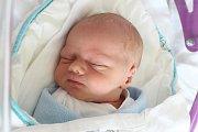 Rodičům Petře a Janovi Baselovým z Nového Boru se v sobotu 30. března ve 13:40 hodin narodil syn Honzík Basel. Měřil 49 cm a vážil 2,54 kg.